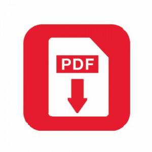 PDF%20(Small)